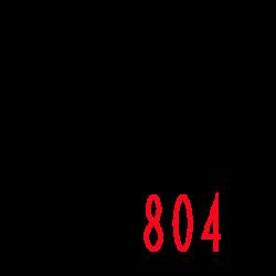 TS804 Logo